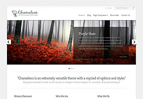 Camelion - Best WordPress themes