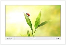Elegant Themes - Image Slider