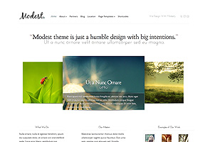 Modest - Best WordPress themes