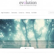 Evolution Premium Theme