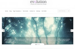 Evolution Premium Theme