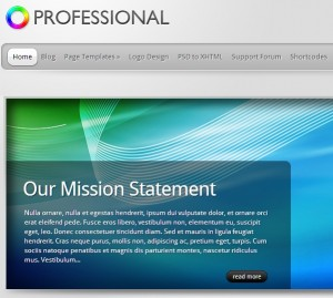 the professional theme